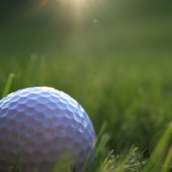 electroquest's golf store, image of a golf ball in very close up view